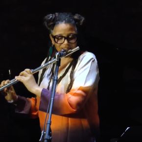 Stream The Nicole Mitchell At Timucua Arts Archive